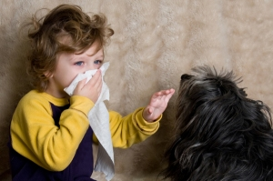 pets for allergies